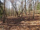 38.6 Acres Cross Creek Ln - Photo 23