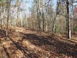 38.6 Acres Cross Creek Ln - Photo 24