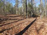38.6 Acres Cross Creek Ln - Photo 27