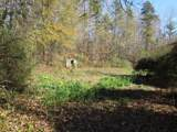 38.6 Acres Cross Creek Ln - Photo 3
