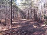 38.6 Acres Cross Creek Ln - Photo 30