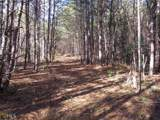 38.6 Acres Cross Creek Ln - Photo 31