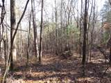 38.6 Acres Cross Creek Ln - Photo 34