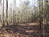 38.6 Acres Cross Creek Ln - Photo 37