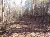 38.6 Acres Cross Creek Ln - Photo 38
