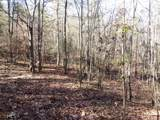 38.6 Acres Cross Creek Ln - Photo 39
