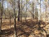 38.6 Acres Cross Creek Ln - Photo 44