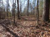 38.6 Acres Cross Creek Ln - Photo 45