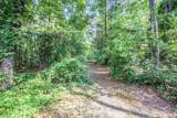 38.6 Acres Cross Creek Ln - Photo 5