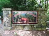 0 Unicoi Hills Trail - Photo 6
