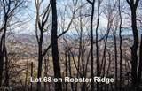 0 Rooster Ridge - Photo 3