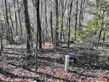 Tract 10 and 13 Falling Waters - Photo 2