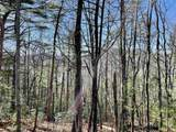 Tract 10 and 13 Falling Waters - Photo 3