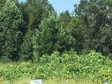 0 Highway 441 South - Photo 1
