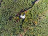 29 acres Monroe Ridge Rd - Photo 65