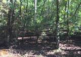 LOT 298 Etowah Drive - Photo 1