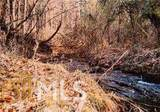 0 Pine Forest Loop - Photo 2
