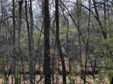 857 Mitchell Branch - Photo 9