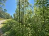 Lot 60 Staurolite Mountain - Photo 6