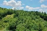 0 Long Laurel Ridge - Photo 5