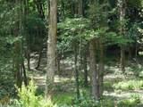 3114 Oakey Mountain Rd - Photo 7