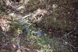 0 Old Deer Path Way - Photo 14