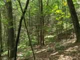 9.49 Acres - Rocktree Rd - Photo 25