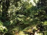 3560 Pleasant Grove Rd - Photo 4