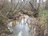 0 Beaver Pond Rd - Photo 1