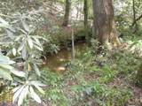 0 Bean Creek Rd - Photo 14
