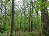 0 Big Oak Dr - Photo 10