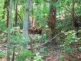 0 Big Oak Dr - Photo 15