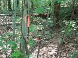 0 Big Oak Dr - Photo 6