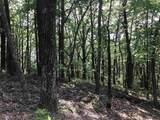 2 Mountain Oak - Photo 1