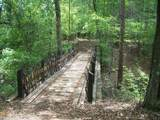 4941 Roaring Fork Pass - Photo 10