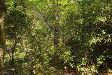 0 Horseshoe Bend Dr - Photo 24