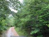 0 Highway 17 - Photo 2