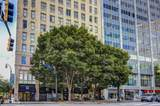 32 Peachtree St - Photo 33