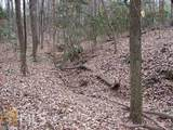 22 Shoals Ridge - Photo 5