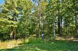 4536 Fawn Path - Photo 10