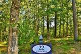 4536 Fawn Path - Photo 13