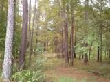 2041 Pine Valley Ct - Photo 11