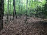 0 Hunters Ridge - Photo 5