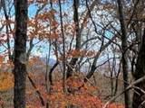 Tract 1 Logans Ridge Rd - Photo 9