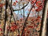 0 Logans Ridge Rd - Photo 3