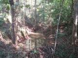 0 Alec Mountain Road And Babbling Brook Ln - Photo 6