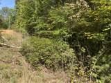 7B Bear Foot Trl - Photo 2