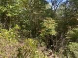 7B Bear Foot Trl - Photo 4