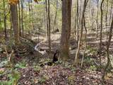 1382 Grant Mill Rd - Photo 42