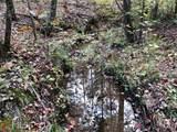 0 Manning Lake Rd - Photo 8